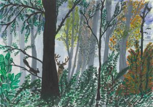 Greeting Card – Forest